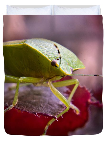 Purple Eyed Green Stink Bug Duvet Cover