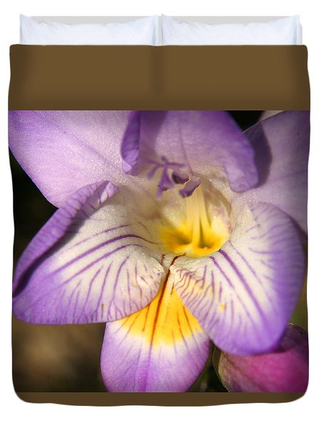 Purple Fresia Flower Duvet Cover by Ralph A  Ledergerber-Photography