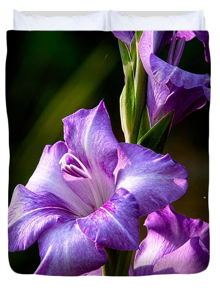 Purple Glads Duvet Cover by Christopher Holmes