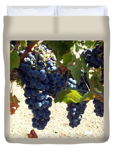 Duvet Cover featuring the photograph Purple Grapes On Vine by Bonnie Muir