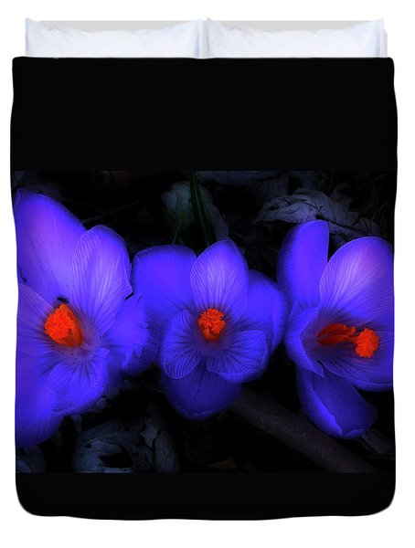 Beautiful Blue Purple Spring Crocus Blooms Duvet Cover by Shelley Neff