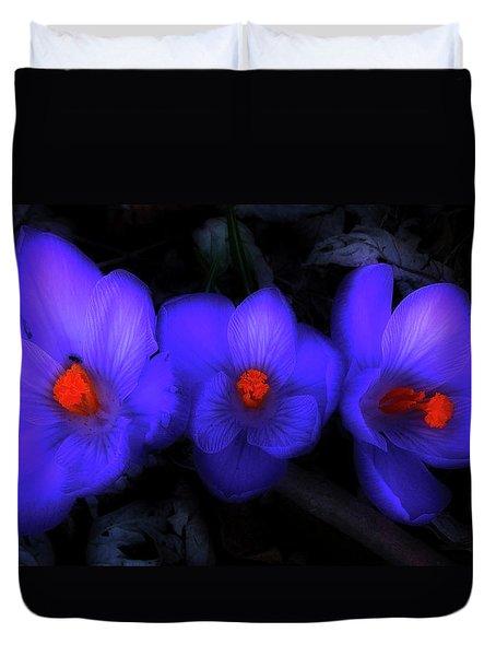 Beautiful Blue Purple Spring Crocus Blooms Duvet Cover