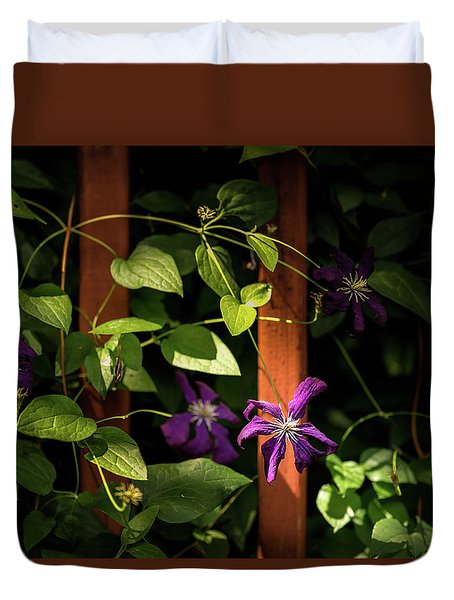 Duvet Cover featuring the photograph Purple Jackmanii Clematis by Onyonet  Photo Studios