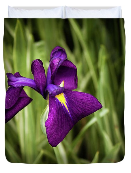 Purple Japanese Iris Duvet Cover