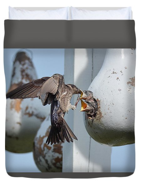 Purple Martin Feeding Chicks Duvet Cover