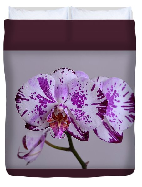 Purple Moth Orchid Duvet Cover by Kathy Eickenberg