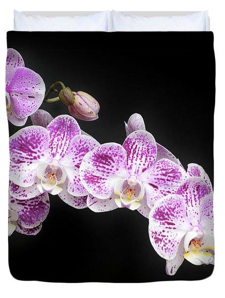 Purple On White On Black Duvet Cover