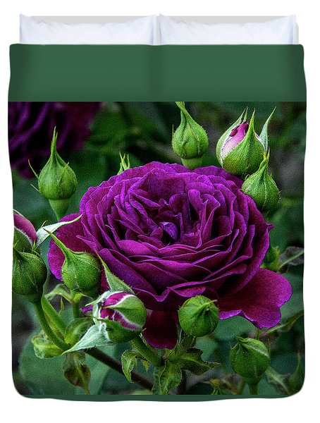 Purple Rose Duvet Cover