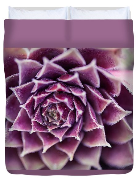 Purple Succulent Plant Blossom In Summer Duvet Cover by Jingjits Photography