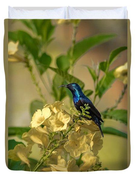 Purple Sunbird Duvet Cover by Ramabhadran Thirupattur