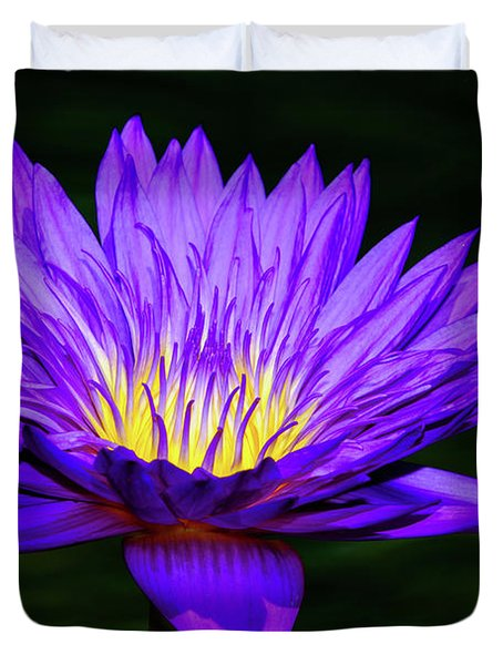 Purple Sunrise -- Water Lily Duvet Cover