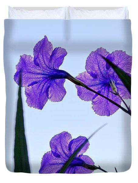 Purple Trio Duvet Cover by Christopher Holmes