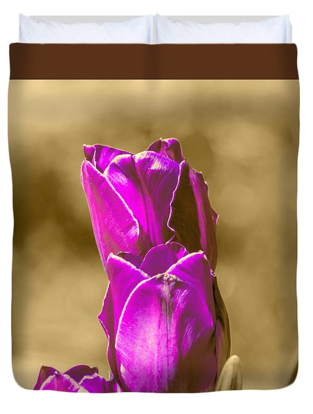 Purple Tulips Sepia Background Duvet Cover