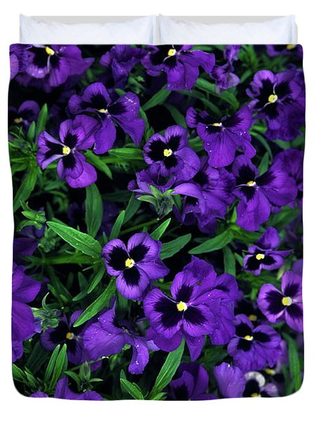 Purple Viola Flowers Duvet Cover by Sally Weigand