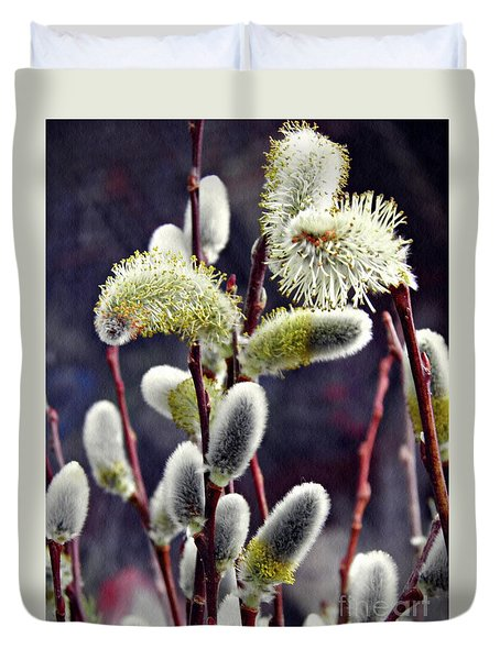 Pussy Willow Spring  Duvet Cover