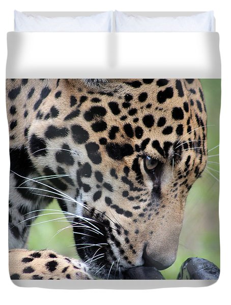 Jaguar And Toy Duvet Cover
