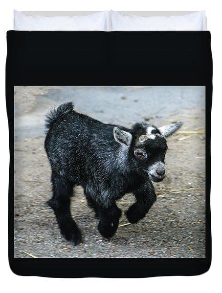 Pygmy Goat Kid Duvet Cover