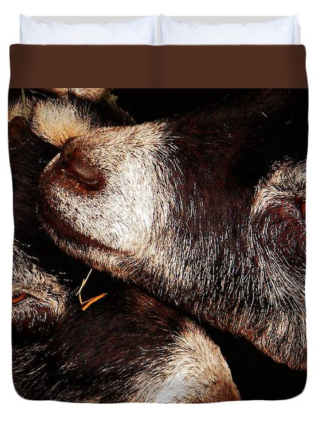 Duvet Cover featuring the photograph Pygmy Goats by Timothy Bulone