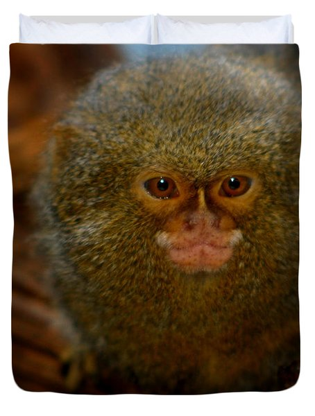Pygmy Marmoset Duvet Cover by Anthony Jones
