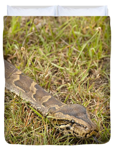 Python In Grass, Kenya Duvet Cover