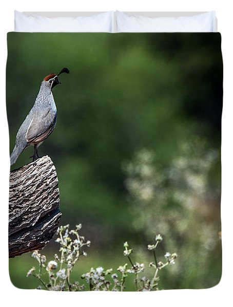 Quail Watching Duvet Cover