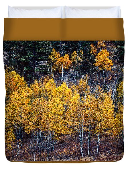 Aspen In Fall Colors In Eleven Mile Canyon Colorado Duvet Cover