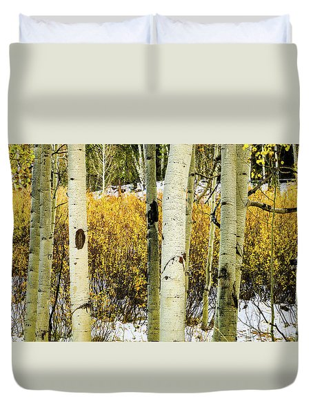 Quakies And Willows In Autumn Duvet Cover