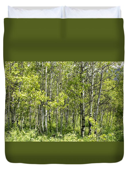 Quaking Aspens 2 Duvet Cover by Cynthia Powell