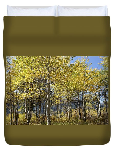 Quaking Aspens Duvet Cover