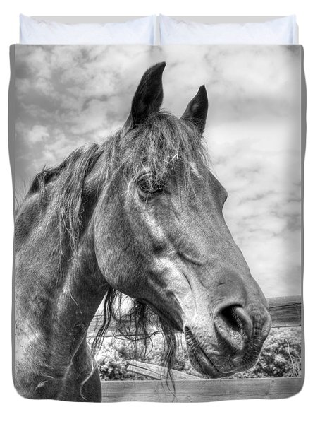 Duvet Cover featuring the photograph Quarter Horse Portrait by Jim Sauchyn
