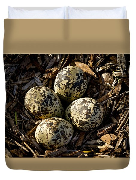 Quartet Of Killdeer Eggs By Jean Noren Duvet Cover