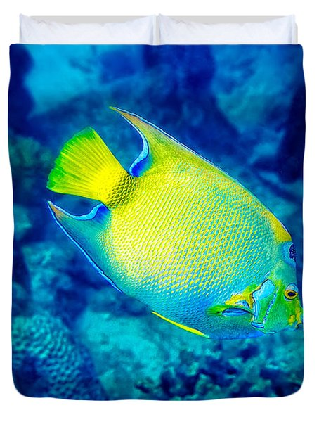 Queen Angelfish I Duvet Cover
