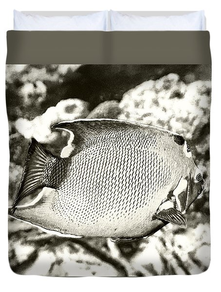 Queen Angelfish Duvet Cover by Perla Copernik