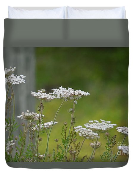 Queen Anne Lace Wildflowers Duvet Cover by Maria Urso