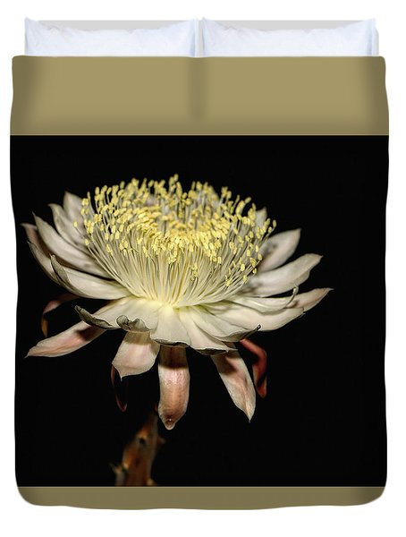 Queen Of The Night Duvet Cover