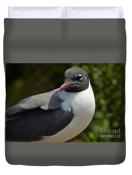 Duvet Cover featuring the photograph Quiet Laughing Gull by Pamela Blizzard