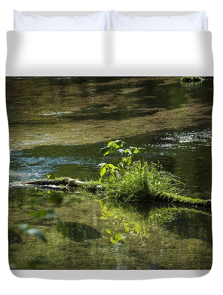 Quiet Trout Stream Duvet Cover