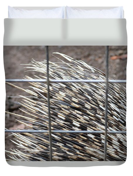 Quills Of An African Porcupine Duvet Cover by Linda Geiger
