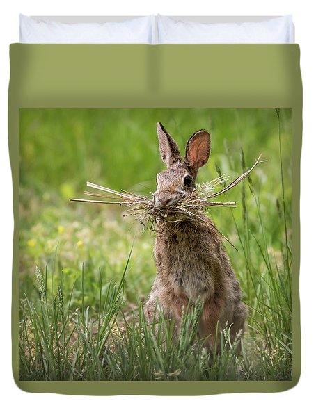 Rabbit Collector Square Duvet Cover by Terry DeLuco