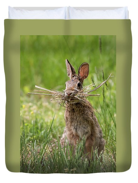 Rabbit Collector  Duvet Cover by Terry DeLuco