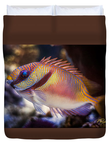 Rabbitfish Duvet Cover by Rikk Flohr