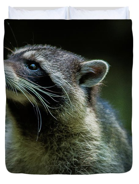 Raccoon 1 Duvet Cover