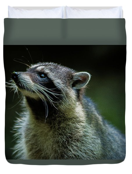 Raccoon 1 Duvet Cover