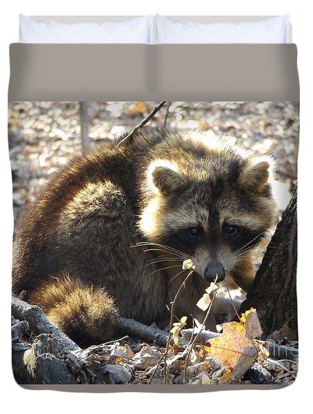 Raccoon Duvet Cover by Erick Schmidt
