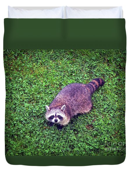 Duvet Cover featuring the photograph Raccoon  by Kerri Farley