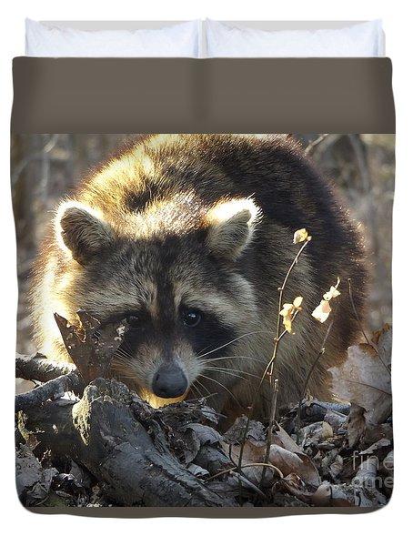 Raccoon Sunset Duvet Cover by Erick Schmidt