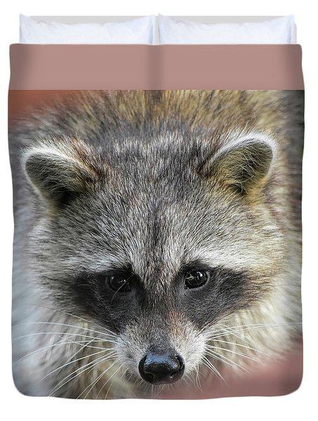 Raccoon's Gorgeous Face Duvet Cover