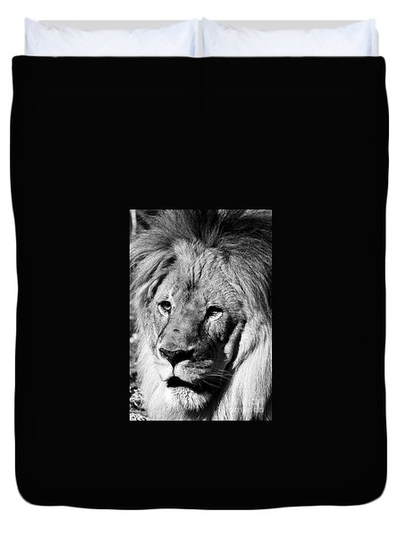 Duvet Cover featuring the photograph Racine Zoo Lion by Ricky L Jones