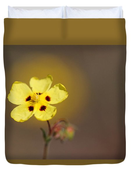 Duvet Cover featuring the photograph Radiate by Richard Patmore