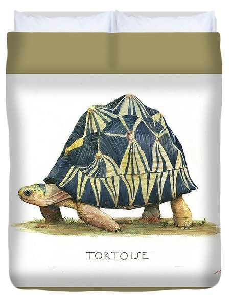 Radiated Tortoise  Duvet Cover by Juan Bosco